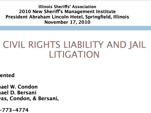 civil_rights_liability_litigation